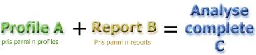 Rapport webtrends